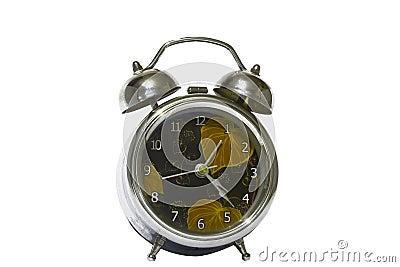 Alert clock