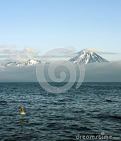 Free Aleutian Islands Royalty Free Stock Photo - 9835095