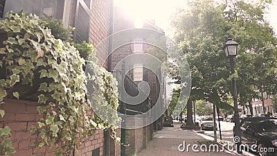 Old Town Alexandria Street stock video
