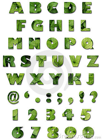 Alfabeto - textura das folhas - verão verde