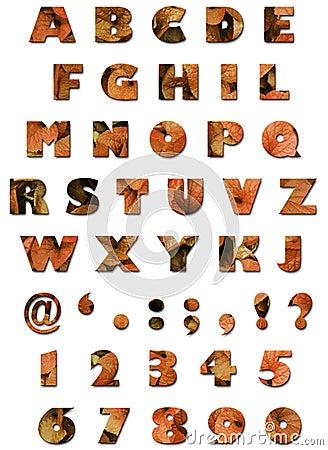Alfabeto - textura de las hojas - otoño anaranjado