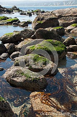 Free Algarrobo Beach Royalty Free Stock Photos - 33092418