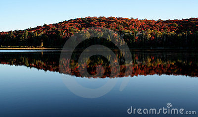 Algonquin Fall Shoreline