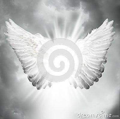 Ali di angelo