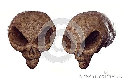 Alien skull - Forbidden Archeology