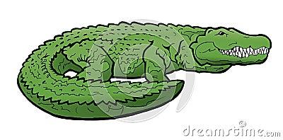 Aligator ilustracja