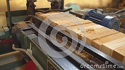 Alimentazione automatica di blocchi di legno video d archivio
