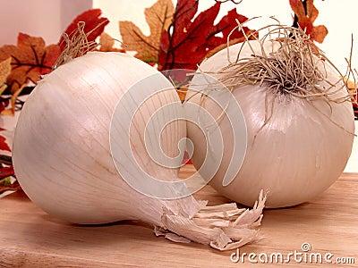 Alimento: Cipolle bianche