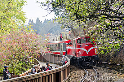 Alishan forest train in Alishan National Scenic Area Taiwan Editorial ...