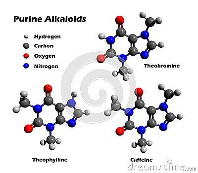 Alkaloids - caffeine, theobromine, theophylline