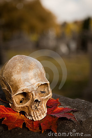 All Saint s skull in autumn
