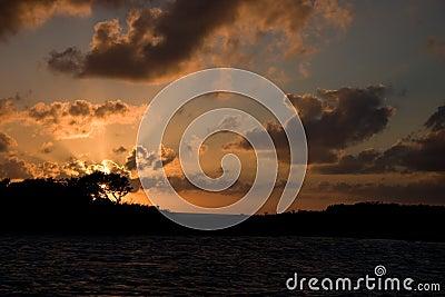 Allen s Cay, Exumas, Bahamas