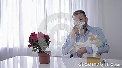 Allergische reactie, een zieke mannetje speelt met een dier en sneeuwt uit de afgrond en veeg met zakdoek stock video
