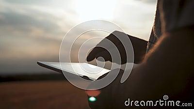 Allevatore senior in un campo di grano che utilizza tecnologie moderne in agricoltura al tramonto Agricoltura intelligente, con l video d archivio