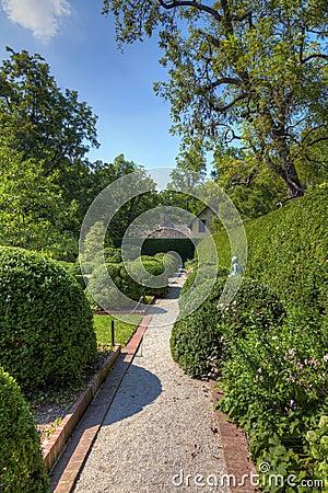Alley in a garden