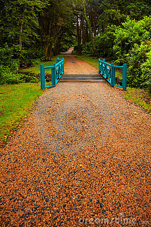 Alley in the gardens at Kylemore Abbey Editorial Photography