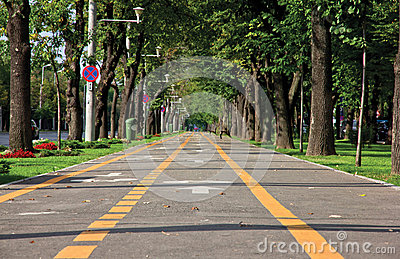 Alley Lane