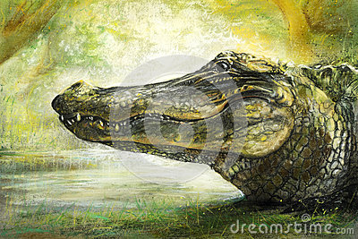 Alligator art in pastel Stock Photo