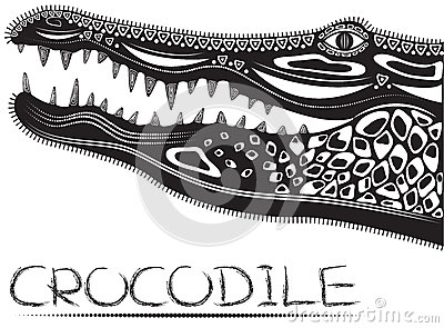 Alligator/Crocodile