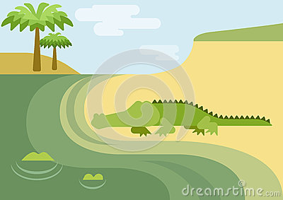 Alligator gator crocodile flat cartoon wild animal reptile