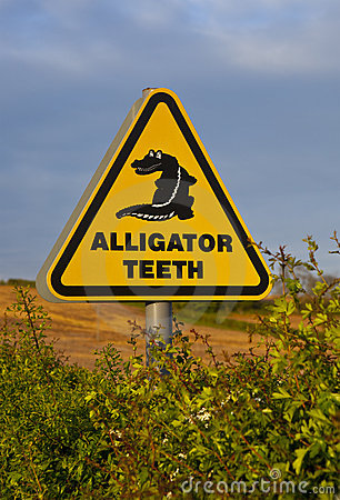 Alligator Sign