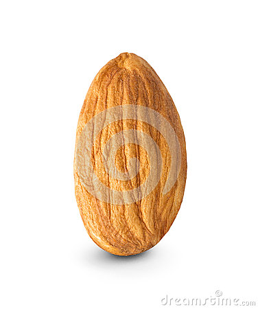 Free Almond Nut Royalty Free Stock Photography - 53357717