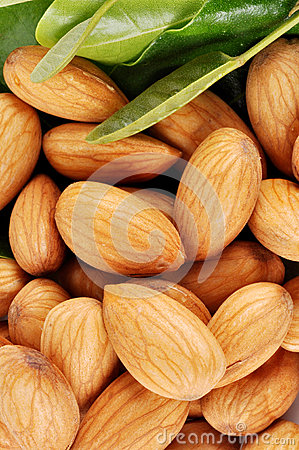 Free Almonds Royalty Free Stock Images - 25405539
