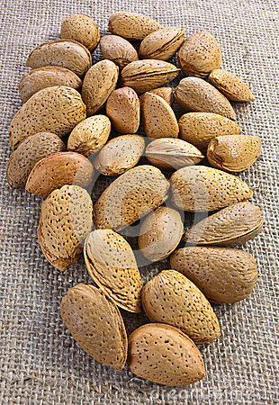 Almonds on jute