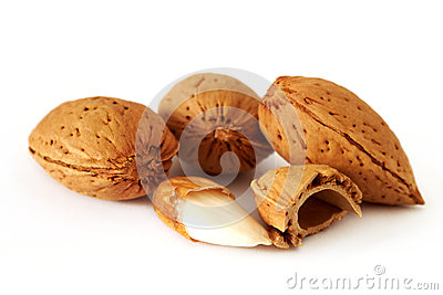 Almonds in the shell
