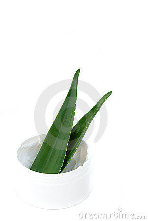 Aloe vera leaves and cream