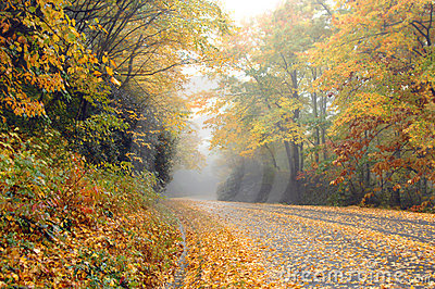 Alone on the Blue Ridge Parkway