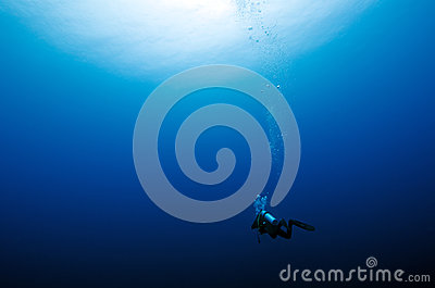 Alone diver in the blue