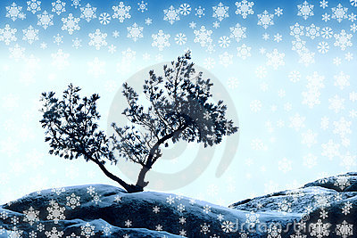 Alone tree and snowflake