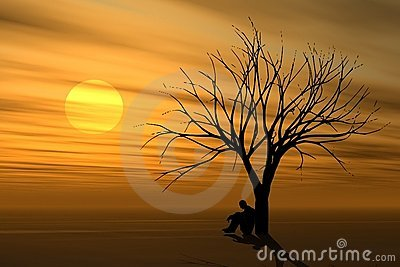 Alone Under Tree At Sunset