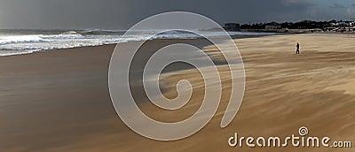 Alone in a windy beach