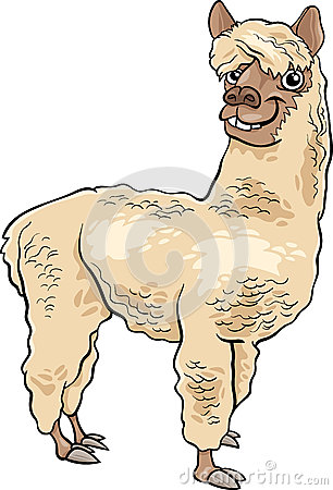 Clip Art Alpaca Clip Art alpaca stock illustrations 429 vectors clipart dreamstime