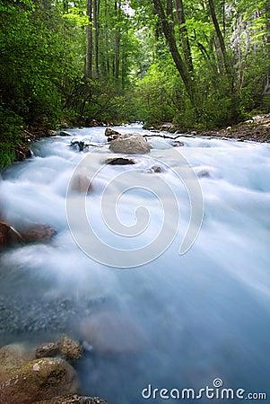 Free Alpen Brook And Sunset Stock Photo - 11598060