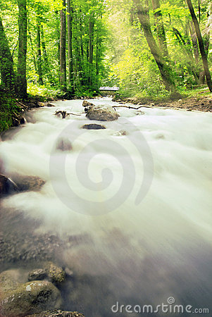 Free Alpen Brook And Sunset Royalty Free Stock Image - 8468426
