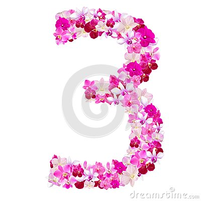 Free Alphabet Number Three From Orchid Flowers Isolated On White Royalty Free Stock Photography - 100928047