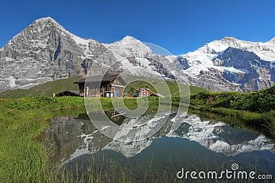 Alpi Svizzera di Eiger, di Monch & di Jungfrau Bernese