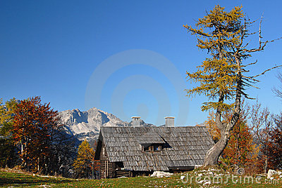 Alpine cottage