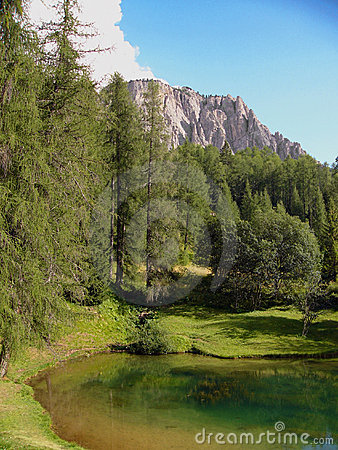 Free Alpine Forest By Lake Italy Royalty Free Stock Image - 6307026