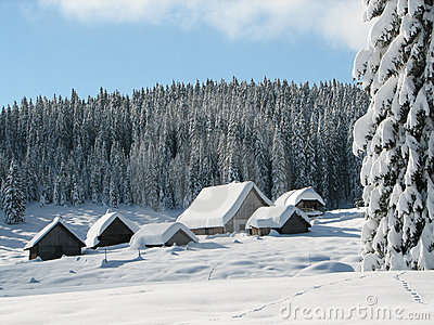 Alpine huts coverd with snow