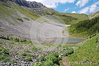 Alpine lake and meadows