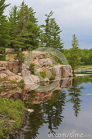 Alpine lake in the park