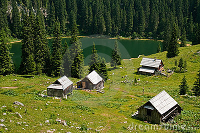 Alpine meadow with lake