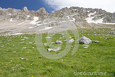 Alpine Meadow And Rocky Summits