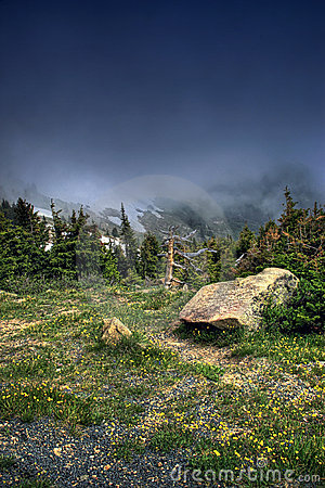 Alpine Mountain Tundra HDR