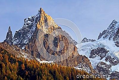 Alpine scene with larches