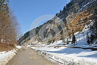 Alpine sunny way